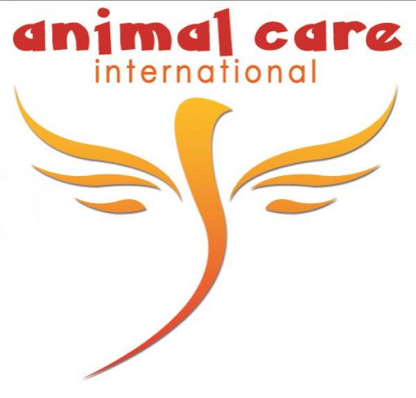 Animal Care International